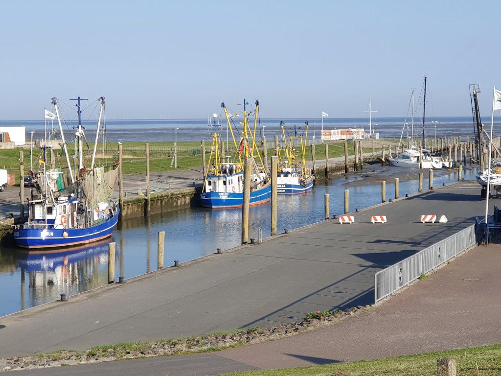 Dorumer Hafen am Morgen