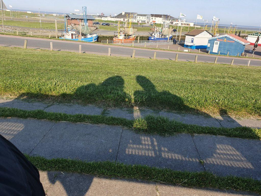 Schattenspiele in der Morgensonne