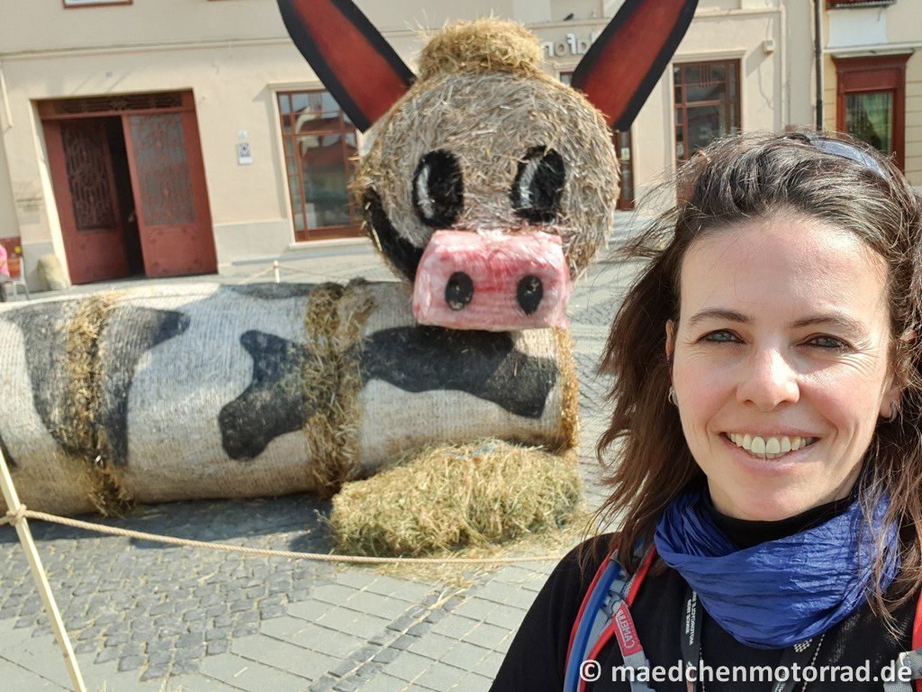 Und für mich als Kuh-Fan auch eine Strohkuh! Mehr geht nicht!