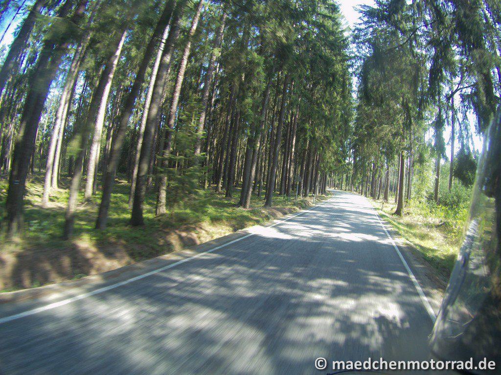 Tolle Wälder.....