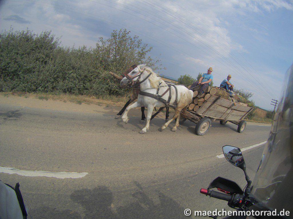 Achtung vor den Pferdefuhrwerken - auch auf Hauptstraßen