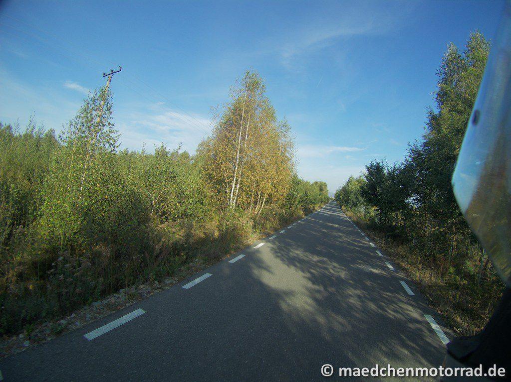 Die ersten Meter durch stille Wälder
