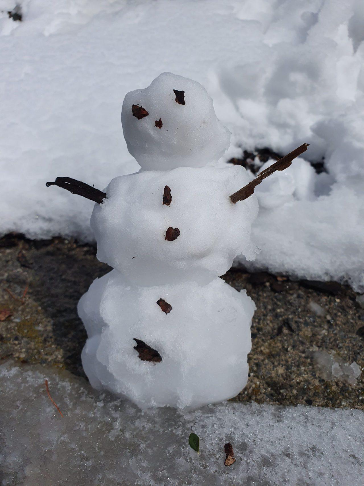 Schneemann im Sommer