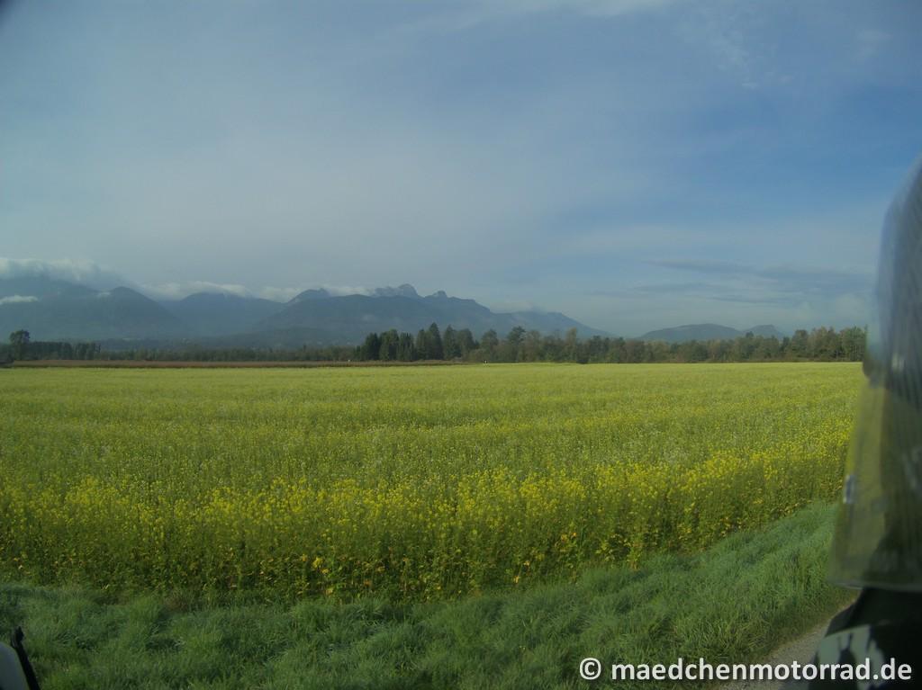 Wieder einmal Blick auf die slowenischen Karawanken