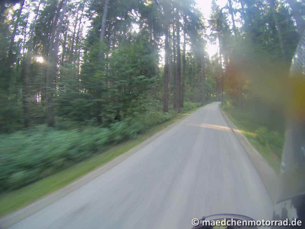 Letztes Stück Wald